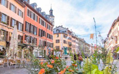 Témoignages de parcours d'insertion professionnelle à Chambéry
